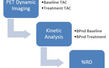 PET Dynamic Imaging, Kinetic Analysis & %RO