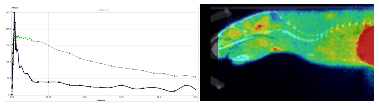 Time Activity Curve (TAC) and rodent PET scan